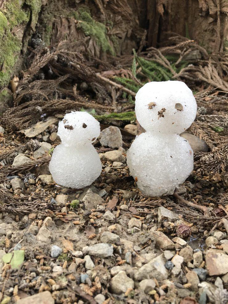 残雪で作った雪だるま
